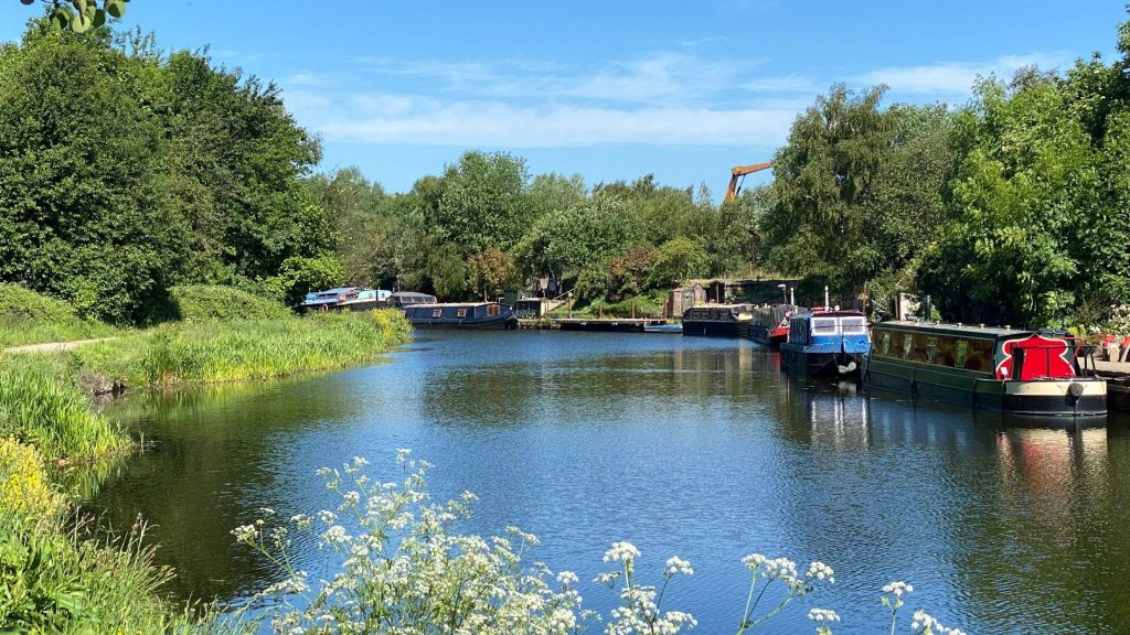Picture of moorings bathed in sunshine